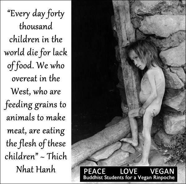 Thich Nhat Hanh.  Poverty.  Spread by www.compassionateessentials.com and http://stores.ebay.com/fairtrademarketplace/