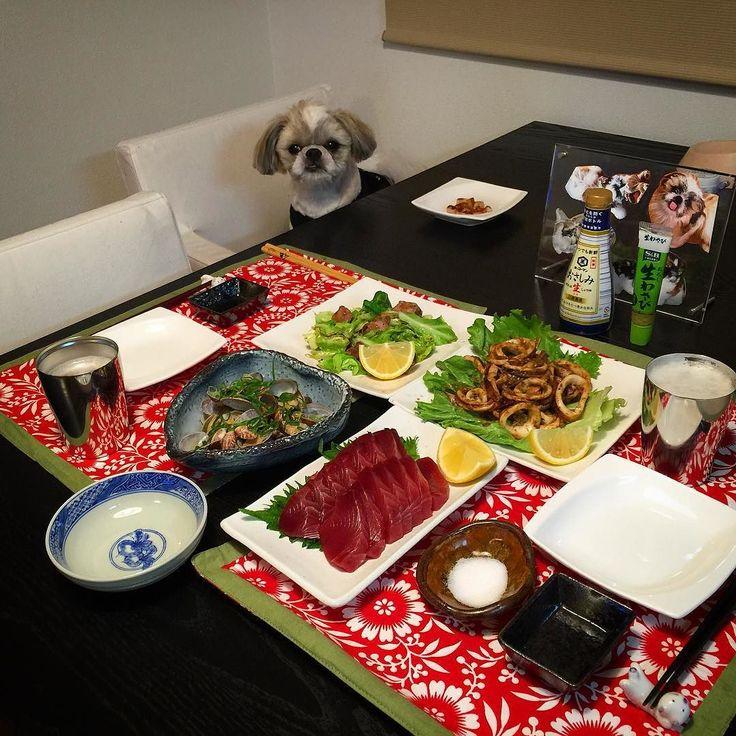 今夜の貴族の晩餐は生カツオ刺身とイカのワタ炒めと砂肝と春キャベツのペペロンチーノとアサリの酒蒸しをヤラカシたよ( ) ではでは( ω)( ω)かんぱーい by mayuge0807