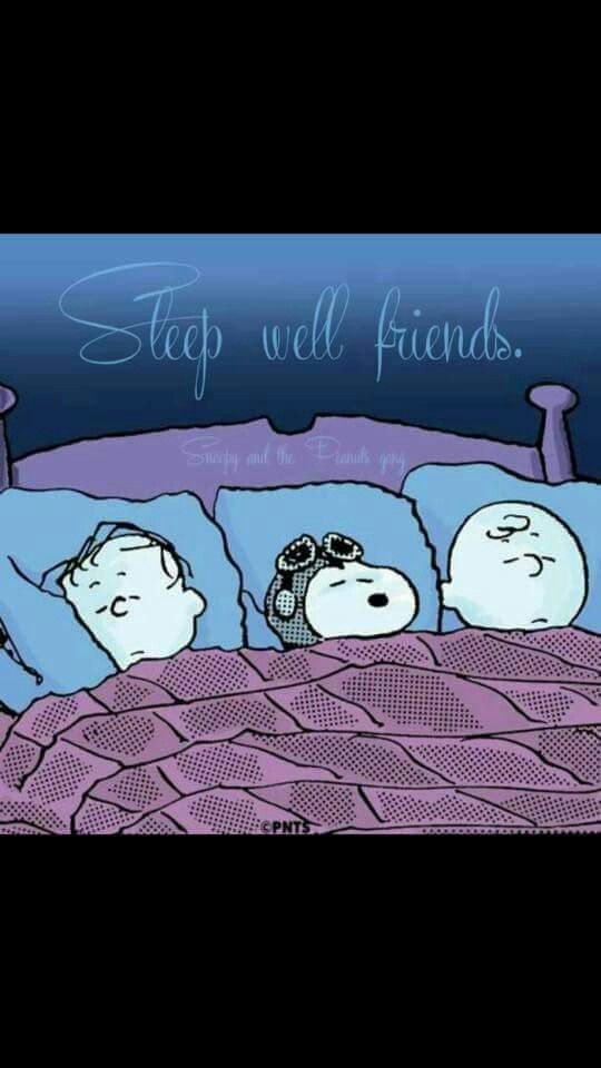"Ha! Never seen this!   ""Sleep well friends"""