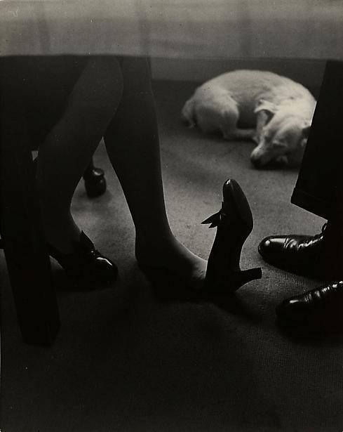Bill Brandt  #couple #dog #legs