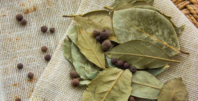 Bobkový list je sušený list vavřínu ušlechtilého používaný zejména jako koření