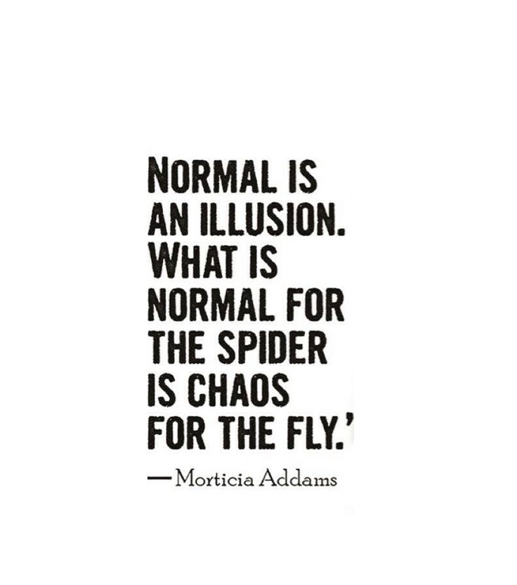 Normal is an illusion. What is normal for the spider is chaos for the fly. ~ Morticia Addams (The Addams Family)