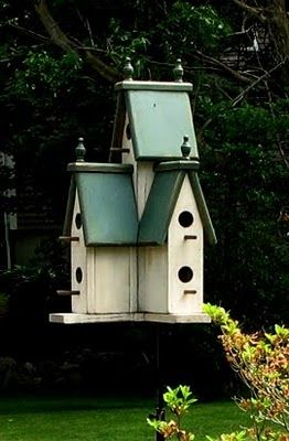 A Brit in Tennessee: For The Birds
