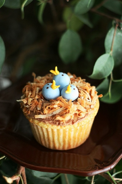 Coconut bird's nest cupcake | Patissiere : The Bakery is Open | Pinte ...