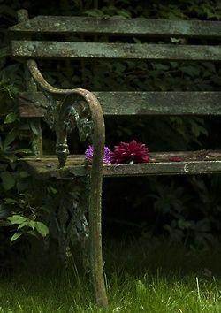 Ogni panchina ha la sua storia da raccontare. ♥♥♥♥♥♥♥♥♥♥♥♥♥ Every bench has her story to tell.