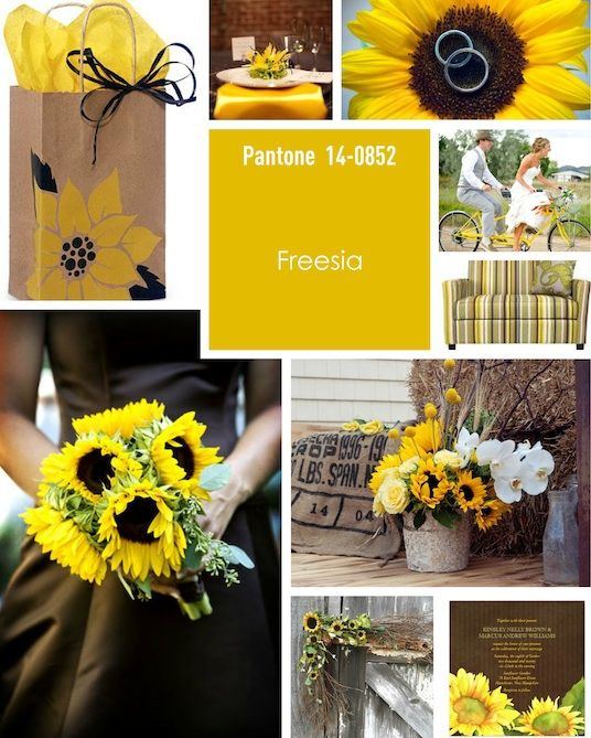 1000+ Images About Mood Boards By Kylie On Pinterest