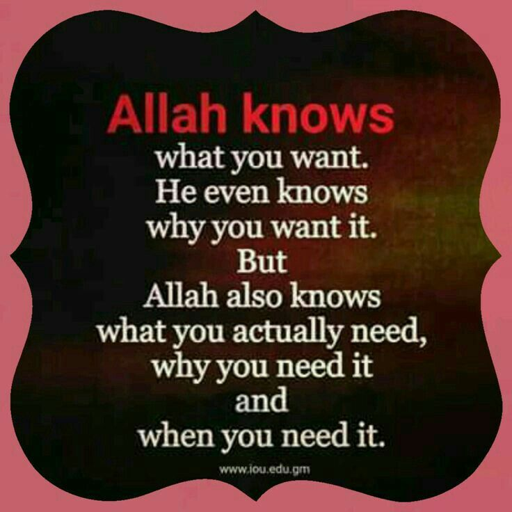 Allah Knows *