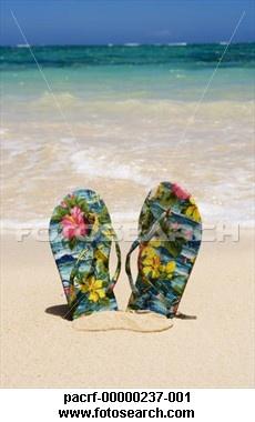 Hawaiian flip flops in sand
