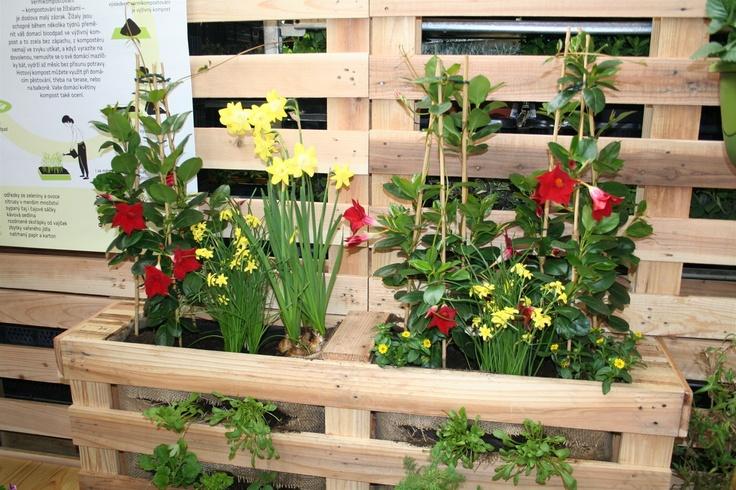 Vrchní část osázené palety, využitá pro okrasné rostliny.