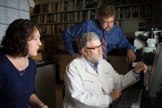 Omega-3 fatty acid stops known trigger of Lupus