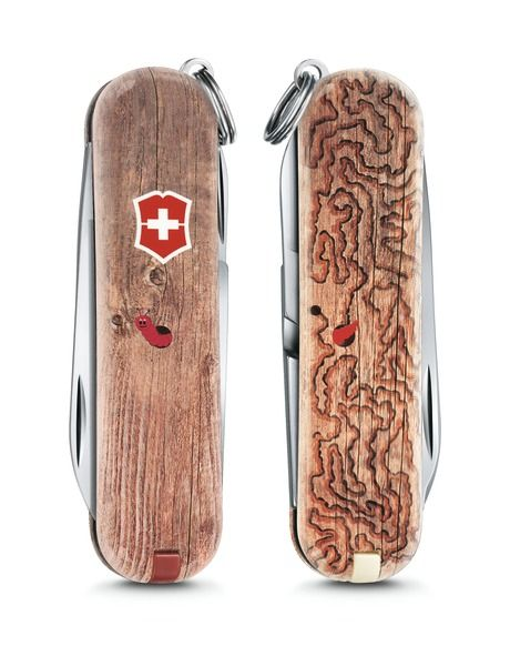 "Victorinox Knife Classic ""Woodworm"" Limited Edition 2017 - Limited Edition - Victorinox Swiss Army Knives - Swiss Army Knives"