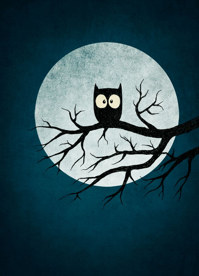 owl. sgtsalt. petter almgren. http://www.flickr.com/photos/sgtsalt/