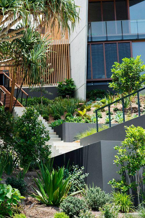 Secret Garden: 284 Best Ideas About Native Bush Garden On Pinterest