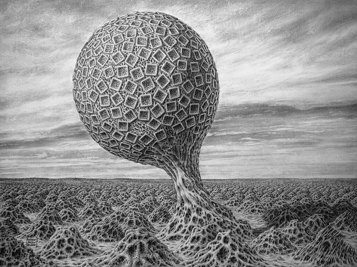 https://flic.kr/p/DMsRWk | Phytoborg3-2016-AndrewLincolnNelson | This is the year's first addition to my Surreal Evolution series of graphite drawings.  The orb-like tree is a Phytoborg, something like a feral plant-machine hybrid.  The landscape  is post- Anthropocene or perhaps an example of exobiology.