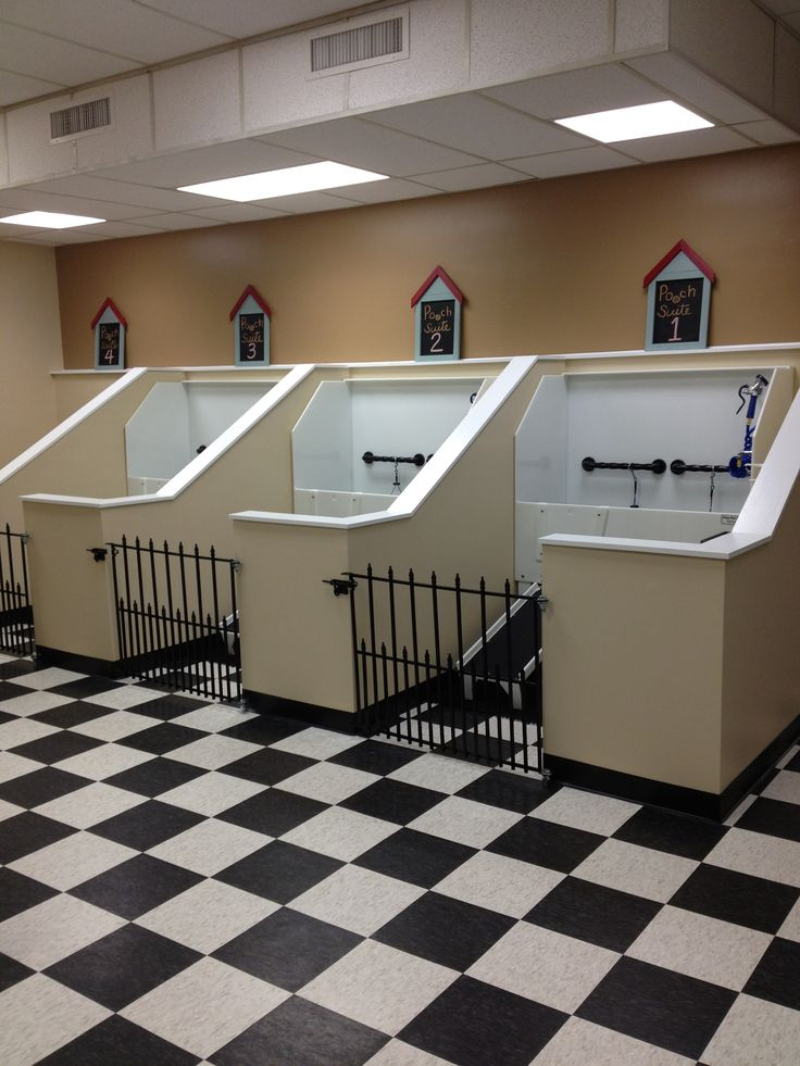 Repinned self service dog wash tub stalls at the dashing for A bath and a biscuit grooming salon