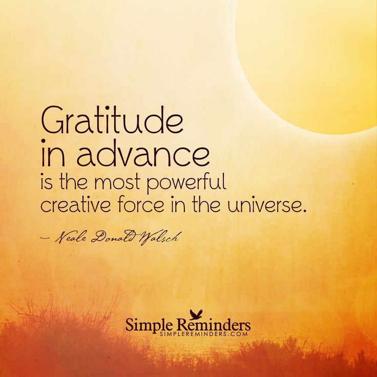 Gratitude in advance is the most powerful creative force in the universe. — Neale Donald Walsch