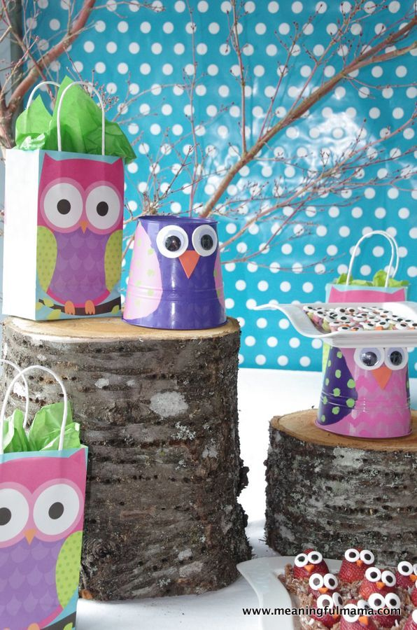 Owl Party Ideas Holidays Food Diy Decor Pinterest Owl Parties