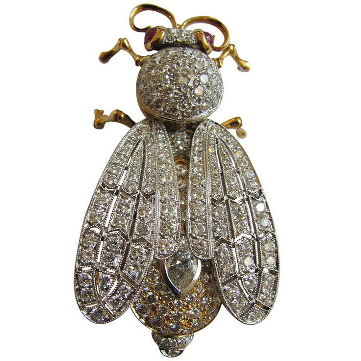 Ruby Diamond Gold Insect Brooch | From a unique collection of vintage brooches at https://www.1stdibs.com/jewelry/brooches/brooches/