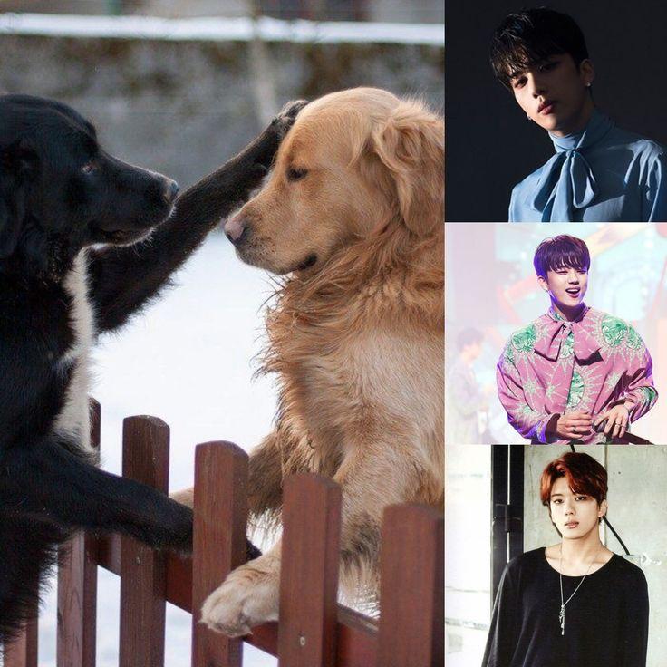 ChineseZodiac&KPOP // Dog // Youngjae of b.a.p