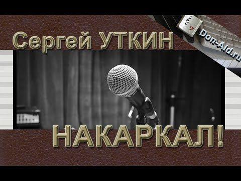 Накаркал! | Don-Ald.Ru