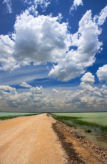African Sky, Etosha National Park, Namibia, Africa.  Follow me, on.fb.me/QrUFNx