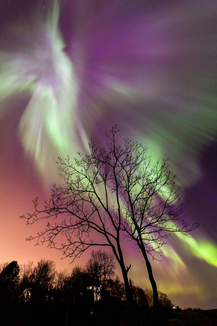 Northern Lights Explosion by Gunnar Søreng ~  Trondheim Norway*