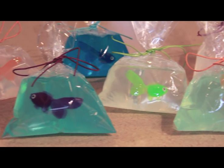 It fish in a bag they are so cool make one Iernd it from I'm so crafty.