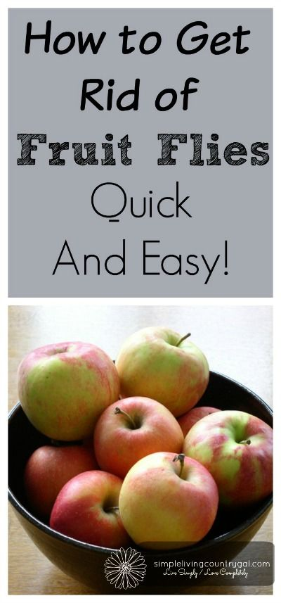 Best tip ever!!  Get rid of those pesky fruit flies without using sprays or fly strips..works every time!