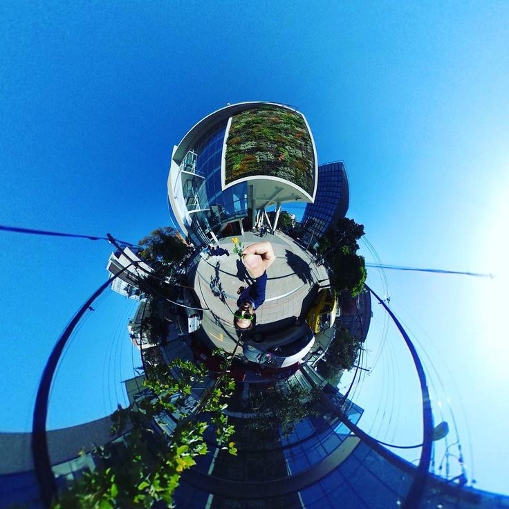 Plant wall  #tinyplanet #rollworld #theta360 #theta360official #littleplanet #photoshpere #livingplanetapp #ricohtheta #360camera #smallworld #spherical #roundworlds #tinyplanetbuff #360panorama #360photography #ricohtheta360 #360  #webstapick