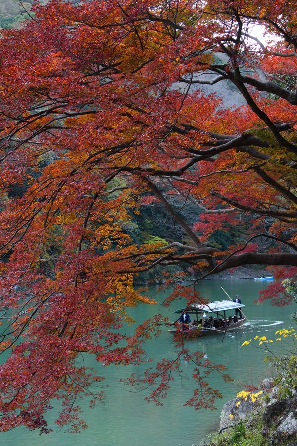 Arashiyama, Kyoto, Japan: photo by 92san