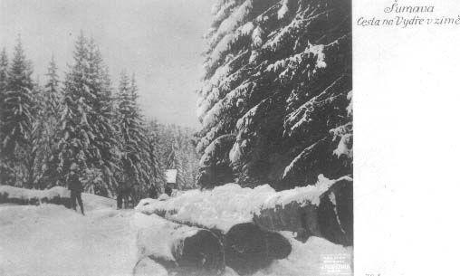 šumava cesta - Hledat Googlem