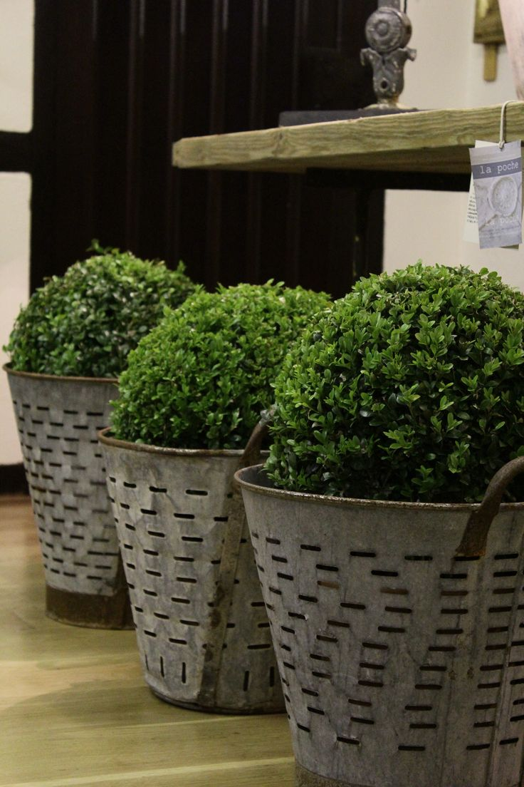 French zinc planters...lOvElY*