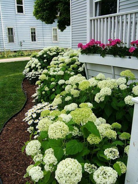 Front Yard Garden Landscaping Ideas