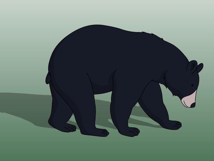 97 best black bears images on pinterest american black bear bear rh pinterest com cartoon black beauty cartoon black bear standing up