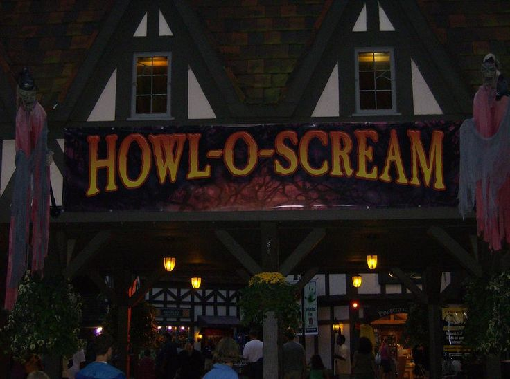 45 best images about busch gardens tampa bay fl on pinterest gardens house and roller coasters for Busch gardens tampa howl o scream
