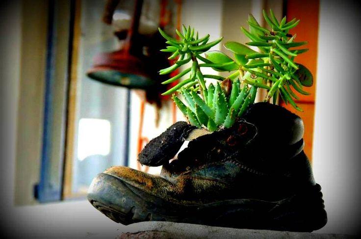 https://flic.kr/p/C7S6q7   Mountain Decor-Onverwacht Cottages and Eagle's Nest accommodation   #Boesmanskloof #McGregor  www.boesmanskloofmcgregor.com Landline:023 625 1667 Japie Cell: 082 894 1462 Sandra Cell: 072 514 4209