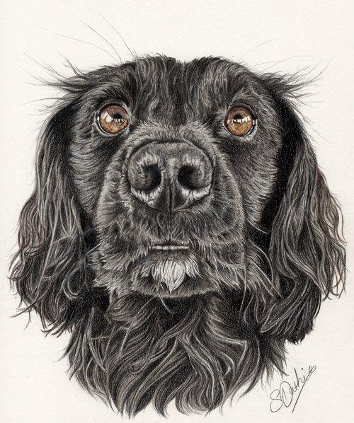 Sarah Duthie animal artist Aspen Park HH