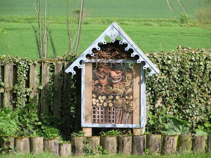 1000 images about cabane insectes on pinterest - Cabane a insectes ...