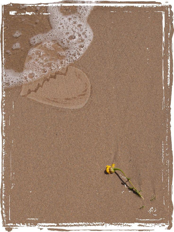 playa, desamor
