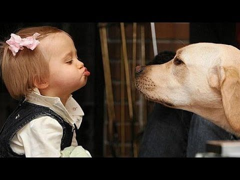 #Dogs_Cats_and_Kids Some of the cutest, loving and most profound relationships are between the family pet and the family baby. The love and camaraderie is so obvious from the very start. http://www.womanyes.com/dogs-cats-and-kids/