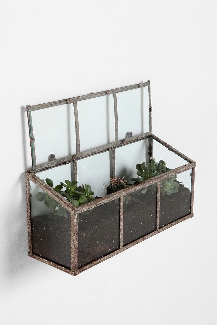 glass wall hanging terrarium