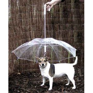 Pet Umbrella with Built in Leash  --  Keep your pet happy and dry in rain, sleet or snow! Now you can protect your pet from the harsh elements with a uniquely designed umbrella especially made for pets. / $12.95