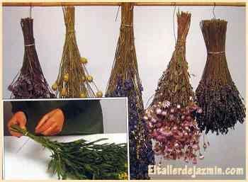 Cómo secar flores  Asegura cada flor con una banda elástica o hilo y cuélgalas con la flor hacia abajo en una barra en un lugar seco, oscuro y cálido, puede ser en un rincón de la galería. Puede colgarse un manojo de especies pero ten la precaución de que las flores no se toquen entre si, puedes colgar tallos de diferentes largos. Este proceso de secado puede tomar desde un par de semanas hasta un mes, dependiendo de la especie y el clima. No las toques hasta que el secado se haya…