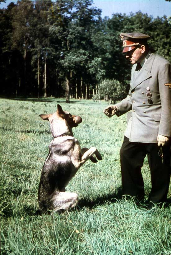 http://www.taringa.net/posts/offtopic/19398059/El-lado-bueno-de-Hitler.html