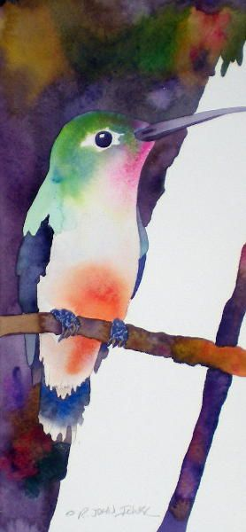 by John Ichter   hummingbird