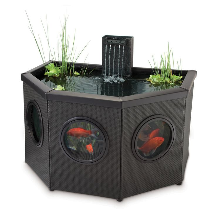 Shop pennington aquagarden raised half moon pond kit at pools n ponds pinterest Lowes pond filter