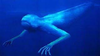 Top 5 Real Sea Monsters - YouTube