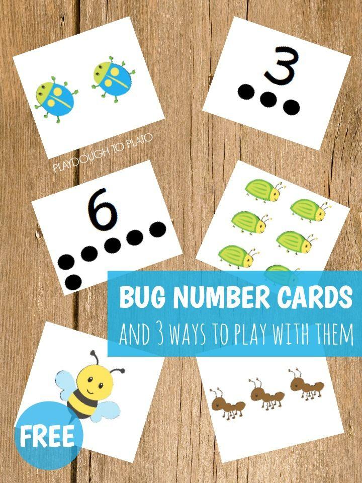 Bug Number Cards - Playdough To Plato