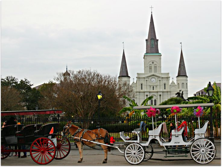 17 best images about new orleans places and things worth for Things to see new orleans