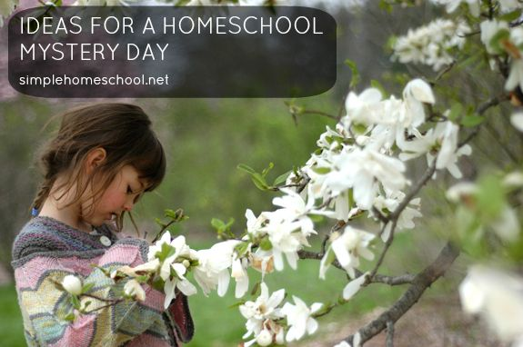29 best images about homeschooling on pinterest pets